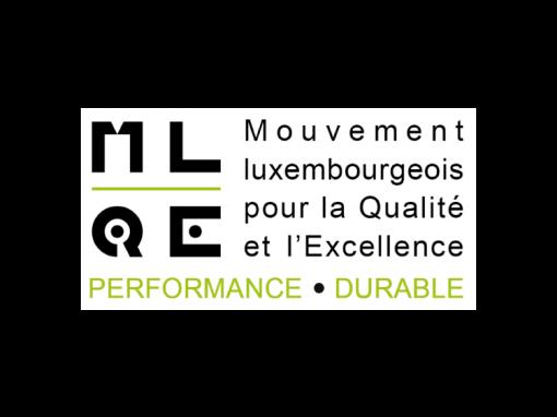 MLQE 2013